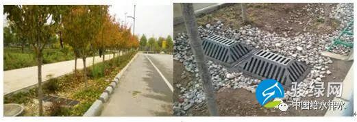 设计图 实景图详解 | 海绵城市道路设计_骏绿网